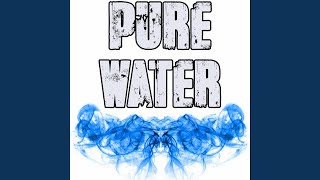 Pure Water (Originally Performed by Mustard and Migos) (Instrumental)