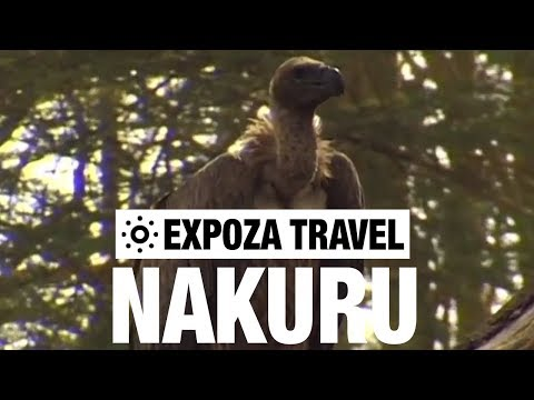 Nakuru (Kenya) Vacation Travel Video Guide