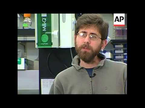 Researchers develop malaria-resistant mosquito