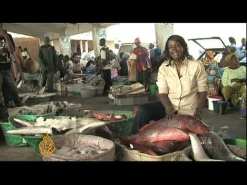 Senegal's fishermen struggle to stay afloat - 10 May 09