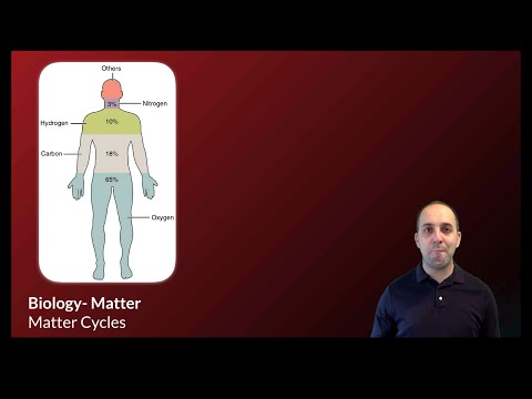 K-Bio Matter 1: Matter Cycles