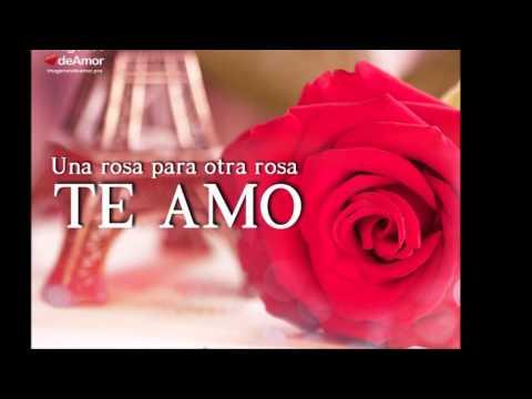 10 Imágenes De Rosas Para Decir Te Amo Al Amor De Tu Vida Youtube