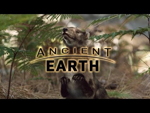Ancient Earth: The Dawn of Mammals