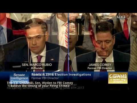 Americas Explosive Reactions to Former FBI Comey Senate Intelligence Hearing