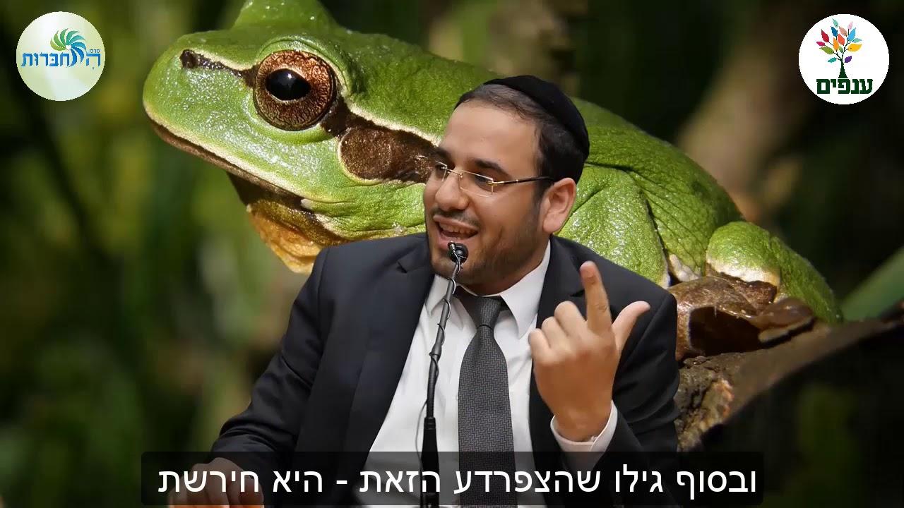 צפרדע חירשת - הרב דוד פריוף HD - סיפור מדהים!