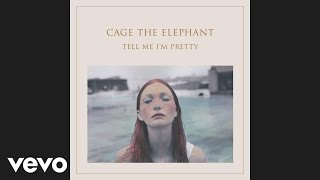Cage The Elephant - Too Late To Say Goodbye (Official Audio)
