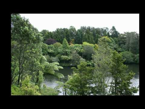 New Plymouth Taranaki Pukekura Park