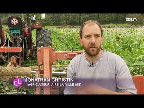 Genève: des agriculteurs labourent leurs champs avec des vers de terre