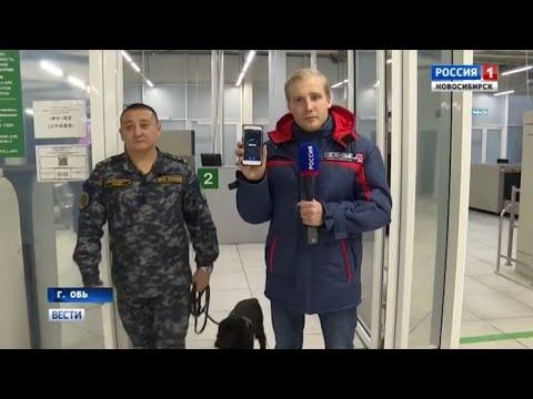 Тренировка кинологов стала неожиданностью для пассажиров аэропорта Толмачево