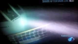 Submarine Shark attack caught on Video