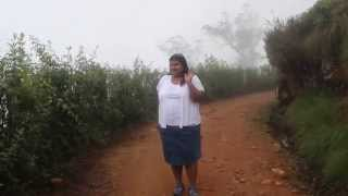 Walking through the fog in the Kandy tea estates - Sri Lanka