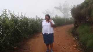 Walking through the fog in the Kandy tea estates - Sri Lanka