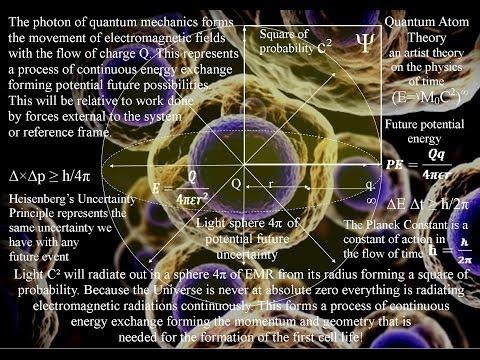 A scientific reason for the Anthropic Principle