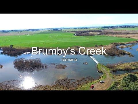 Brumby's Creek Tasmania