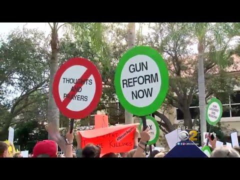 Florida School Shooting Survivors Leading New Gun Control Movement