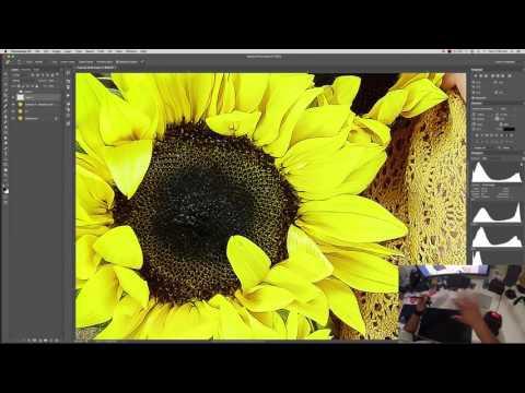 Surface Studio Alternative Workflow