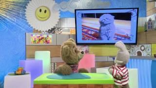 С добрым утром, малыши! - Покажи класс - И снова прикольные видео про животных и детей