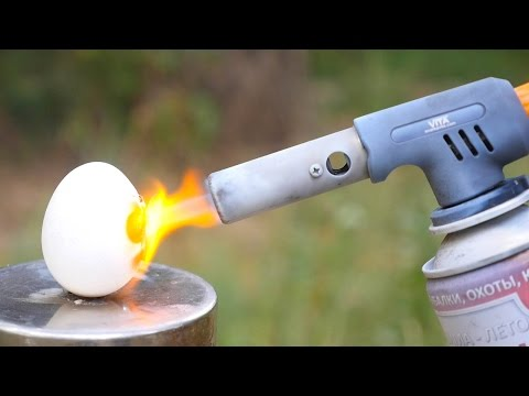 EGG VS GAS TORCH