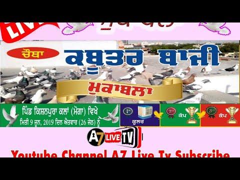 LIVE || Kabootar Bazi || KIshanpura Kalan || 9 June 2019