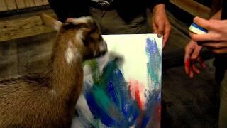 Animal Art Goat Painting - Cincinnati Zoo