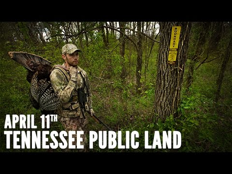 Cabela's Spring Thunder | Tennessee Public Land Turkey Hunting