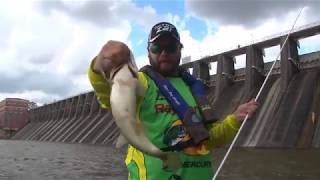 Big Spotted Bass at Lay Lake Dam