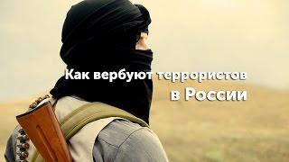 Как вербуют террористов в России