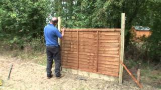 How To Fix Trellis Onto A Fence Panel | Forest Garden & Howarth Timber