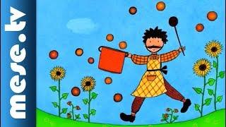 Varga Katalin: Kiugrott a gombóc (mesefilm, animáció)