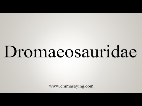 How To Pronounce Dromaeosauridae