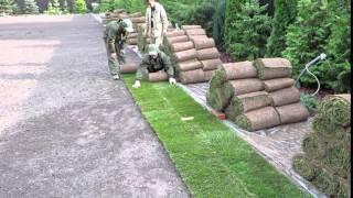 Укладка рулонного газона(, 2016-04-23T07:37:40.000Z)