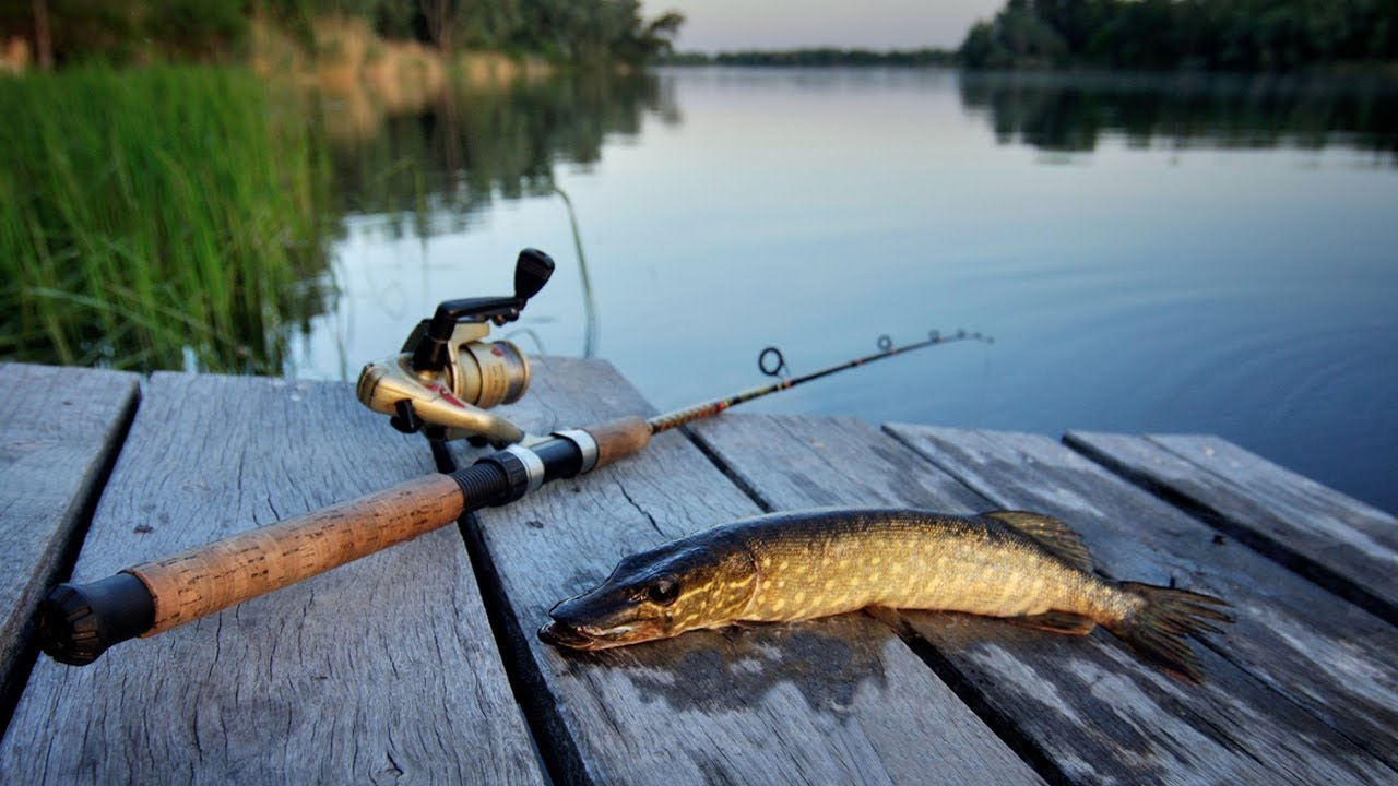 Фотообои про рыбалку в смартфон