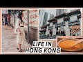Life in Hong Kong  Desserts  Fortune-Tellers   Temple Street Food   HK Travel Vlog