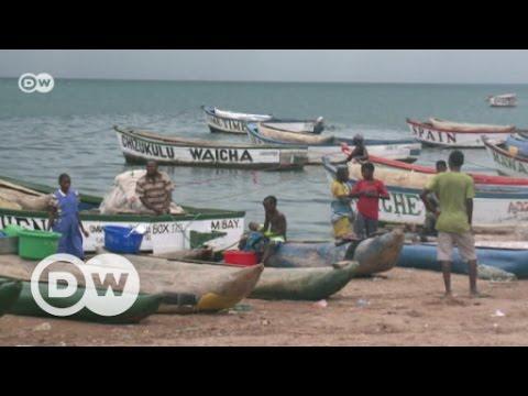 Turning the tide on overfishing at Lake Malawi | DW English