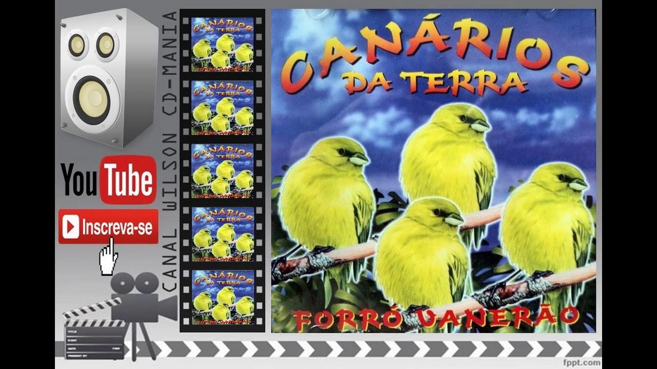 CANARIOS FESTA REINO JUNINA DO BAIXAR CD