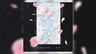 Shawn Mendes & Zedd - Lost In Japan (Official Audio) Video