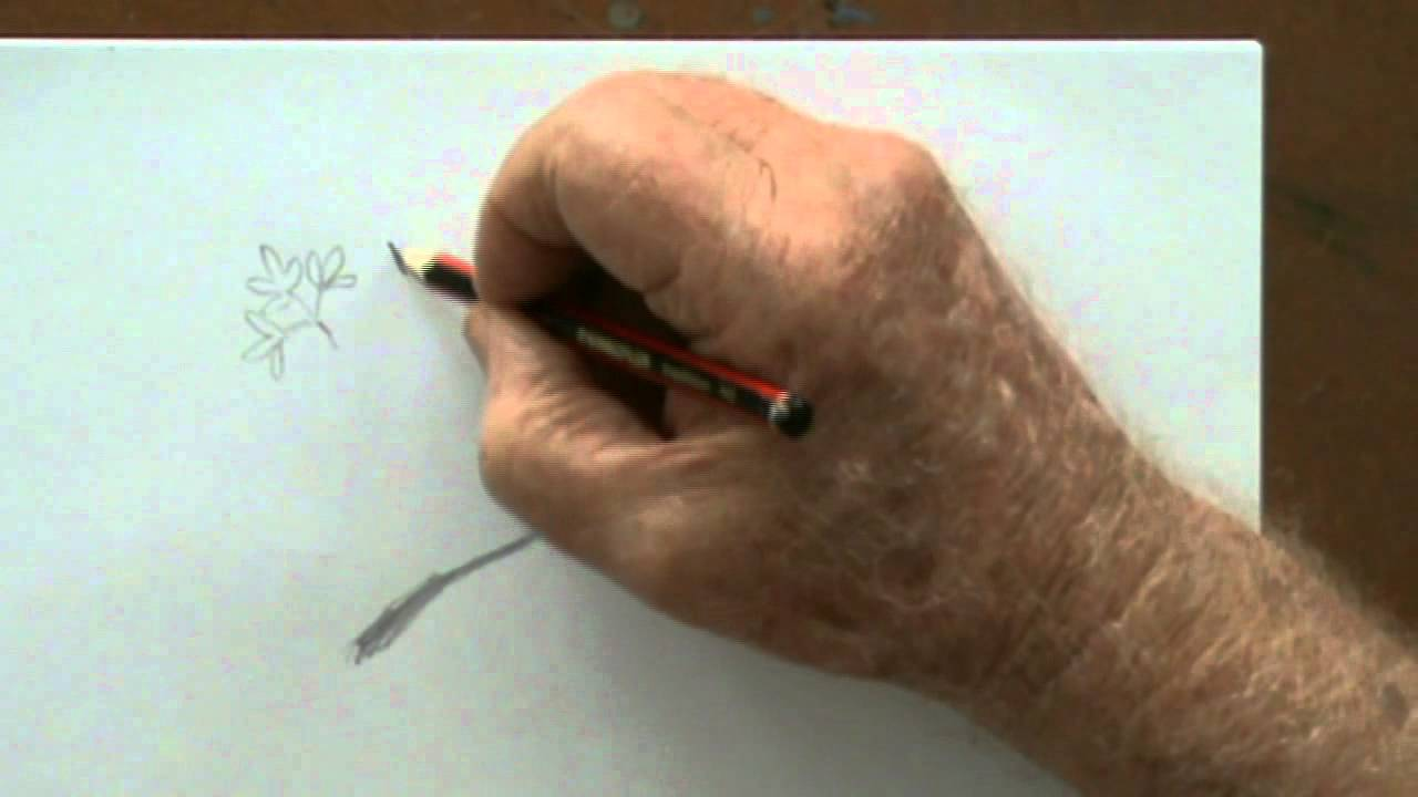 How to draw step by step pencil drawing lessons - YouTube