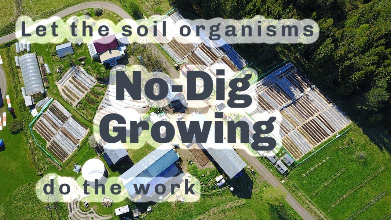 S4 ○ E10 No Dig Market Gardening - YouTube