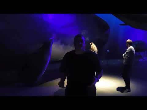 Whales of Iceland Exhibit