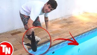 Rezende joga peixes na piscina e causa revolta na comunidade de Aquarismo