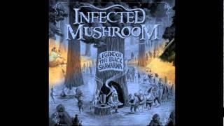 Doors - Riders On The Storm  Infected Mushroom Rmx