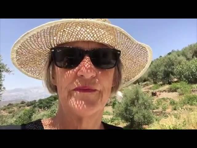 Chiquita #8: Hoe een bril de waarheid verhult