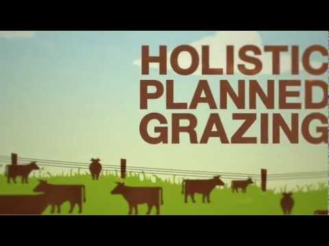 SAVORY INSTITUTE HOLISTIC PLANNED MANAGEMENT