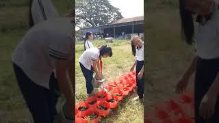 Hs Truong Tan Xuan trong hoa 3
