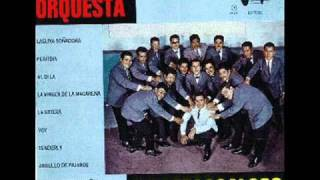 ORQUESTA COATZACOALCOS - TENDERLY.wmv