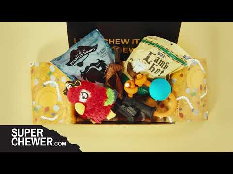super-chewer-by-barkbox---show-your-dog-some-love-this-valentines-day