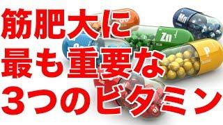 不足するとどうなる?!【筋肥大】に最も重要な3つのビタミン!!