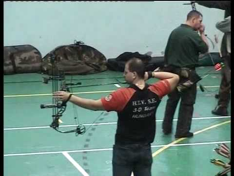 Archery 2D-3D /3   Bowtech 101st  Airborne, Hoyt