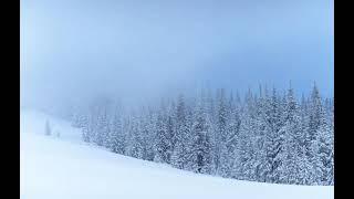 В России лавина сошла на горнолыжный курорт Под снегом оказались домики
