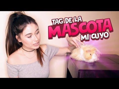 TAG DE LA MASCOTA - MI CUYO